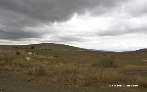 African Countryside