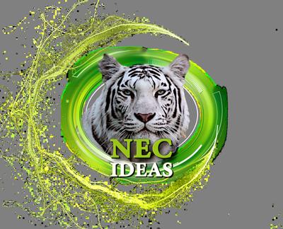 NEC IDEAS TSO